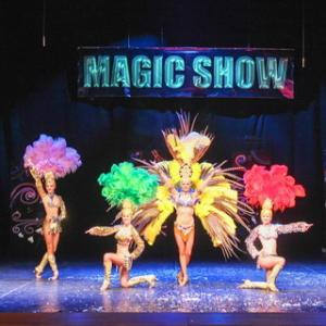 "V International Festival of Magicians ""Magic show"""